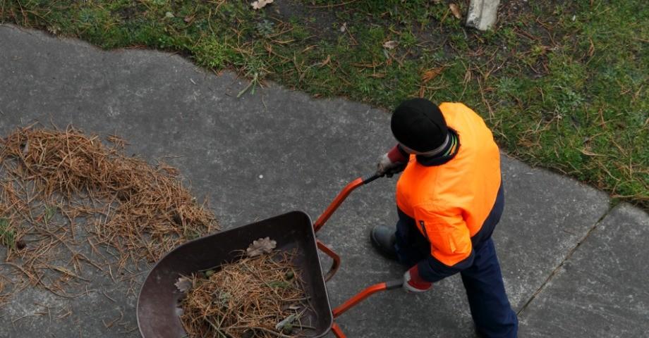 Trädgårdsarbete- numera en RUT-tjänst FOTO: ED Dunes/flickr