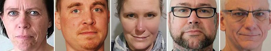 Porträttbilder på Camilla Ingman, Gunnar Westin, Pia Jacobsen, Roger Crossler och Lars Henriksson