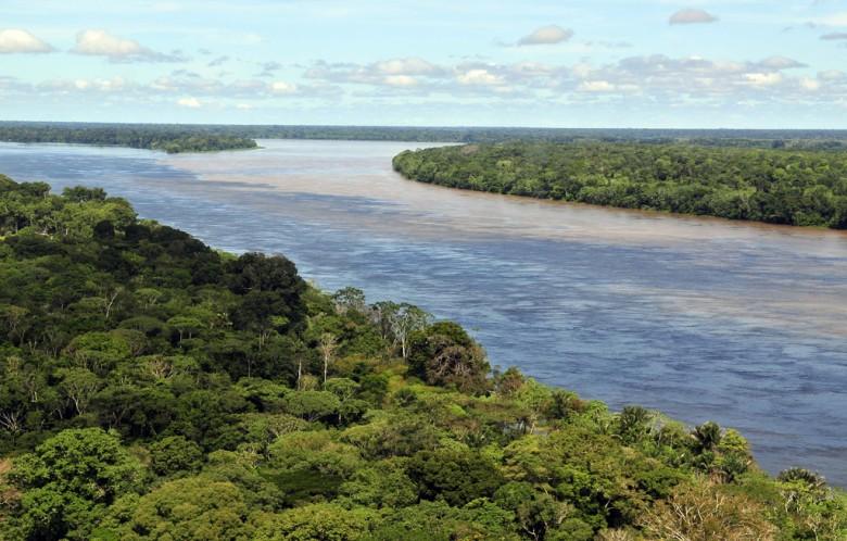 Bild: CIAT International Center for Tropical Agriculture
