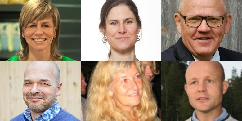 Louise König, Johanna Sandahl, Johan Ununger, Lars Nellmer, Inger Källander och Anders Heimer.
